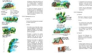 image-reglement-urbanisme